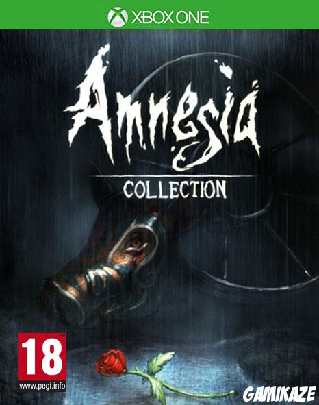 cover Amnesia : Collection xone