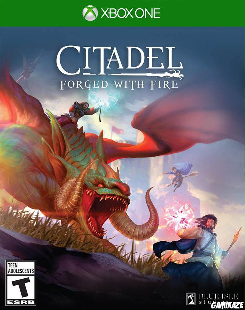 cover Citadel : Forged with Fire xone
